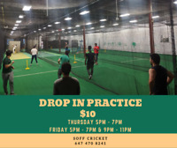Drop In Cricket Practice Thursday and Friday  Evenings! $10