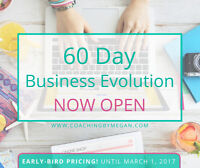 The 60 Day Business Evolution Program + 8 Coaching Session