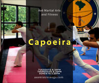 Capoeira Brazilian Martial Art