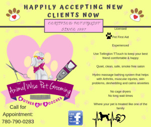 Animal Wise Pet Grooming Happily accepting new clients now.