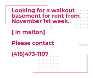 Need walkout basement for rent , from November 1st week