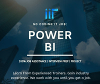 Become a Power BI professional today! 100% Job Assistance!