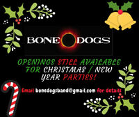 Bone Dogs Rock and Roll Band for Hire
