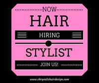 Hairstylist wanted for very busy salon!!! $$$$