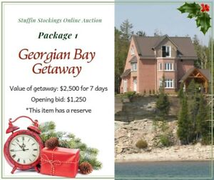 Georgian Bay Summer Getaway - bid for Charity!