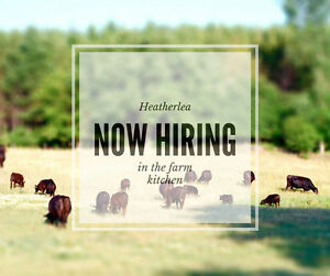 Experienced Cook for Farm Shoppe Kitchen in Caledon, ON