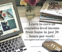 ⚡Work From Home - Earn An Executive Level Income⚡