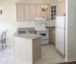 Kitchen cabinets, counter, sink, faucet and appliances