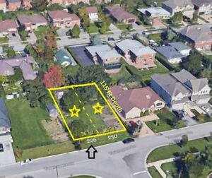AMAZING Vacant Land in VAUGHAN 975,000 ONLY