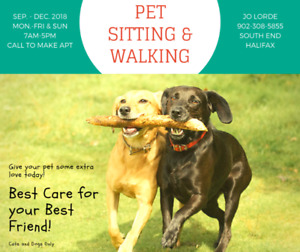 Pet Sitting and Walking Services