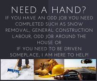 ******DO YOU NEED A RELIABLE HELPING HAND********