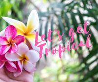 Lets Get Tropical- Floral Workshop