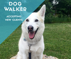 MILTON Dog Walking Services