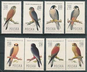 Poland stamps MNH Falcon (Mi. 2354-61) - <span itemprop='availableAtOrFrom'>Bystra Slaska, Polska</span> - Poland stamps MNH Falcon (Mi. 2354-61) - Bystra Slaska, Polska