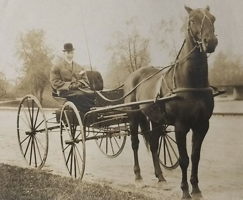 1900s Wealthy Man W/ Horse & Carriage Photo African American Vtg Black Americana
