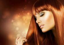 Hairdressing Salon Hampton Bayside Area Preview