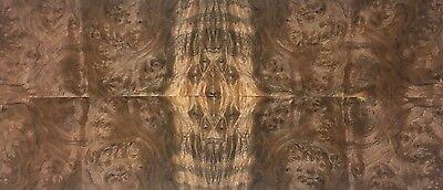 Exotic Walnut Burl Wood Veneer Raw/Unbacked (4 pc Pack - 16
