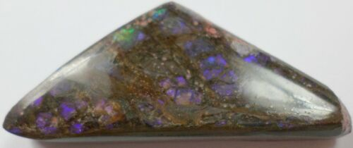 34.65 Cts Canadian Ammolite Ammonite Purple Green Red Cabochon Cabs 37x17mm