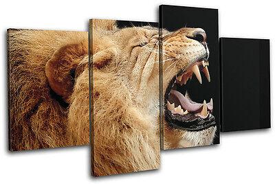 (Lion Roar Wild Animals MULTI CANVAS WALL ART Picture Print VA)