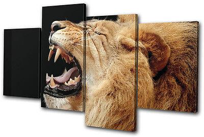 (Animals Lion Roar Wild MULTI CANVAS WALL ART Picture Print VA)