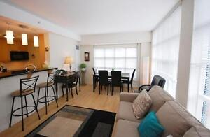 Rare Vacancy in Vic Suites-1& 2 Bdrm+Den Avail NOW/Feb/March/May