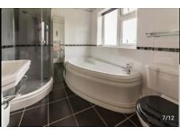 Full bathroom suite. Shower, shower head, shower basin, bath, toilet. Sink