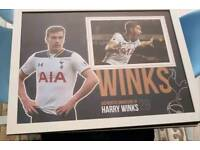 Harry Winks hand signed A2 framed photo display with Coa
