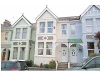 Beautiful & spacious 3 bedroom period home in Peverell