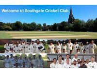 Southgate Cricket Club is looking for new members