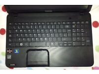 Toshiba Windows 7 or 10 laptop computer