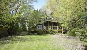 Lakefront Cabin rental at Blackstrap