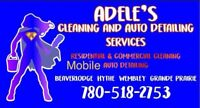Cleaning services available!  Mobile interior auto detailing