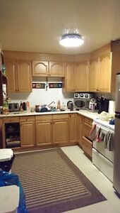 Basement Suite in Pleasantview 1 bedroom and 1 den