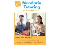 Mandarin Private Tuition / Online Live 1:1