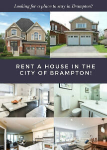 Spacious and clean house rentals in Brampton