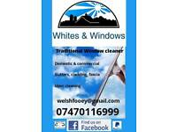 Window cleaner traditional cleaner gutters fascia conservatory cleaning