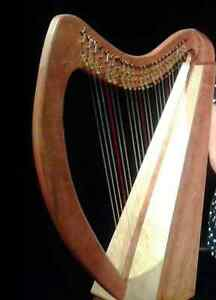 Therapy Harp For Sale, 25 strings fully levered Gatineau Ottawa / Gatineau Area image 2