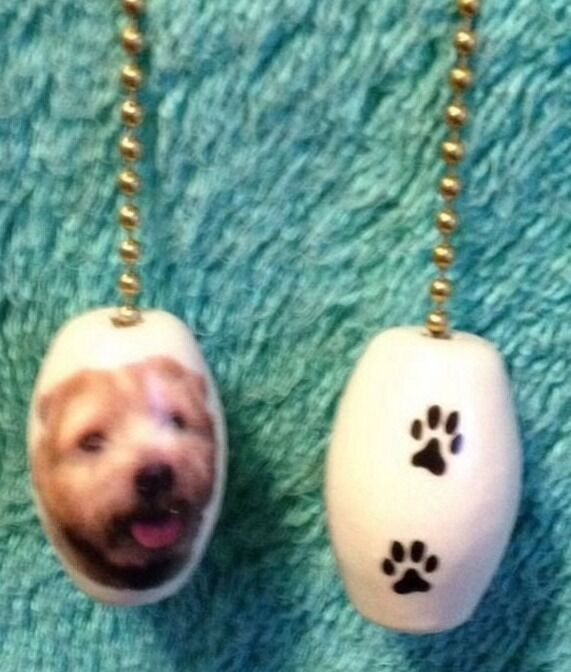 """One Norfolk Terrier Dog Fan Pull With Paw Prints On The Back 1"""""""