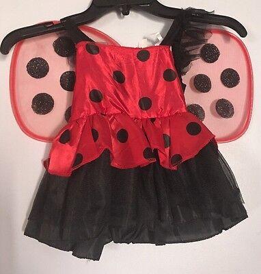 Ladybug Dress Detachable Wings Baby Girl Lady Bug Costume Good Condition