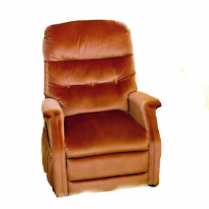 Fauteuil Inclinable /  Recliner Chair