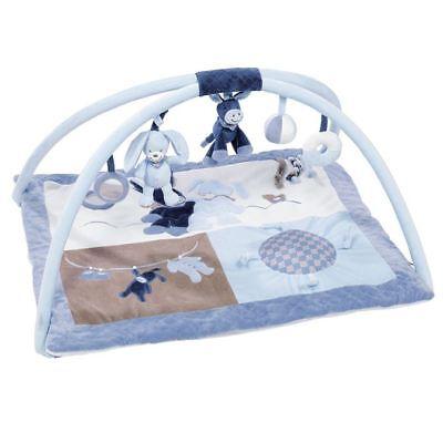 Nattou Alex und Bibou- Baby Spielmatte mit Arches (Blau) Fitness 0m+ (Fitness Und Baby)
