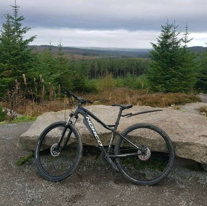 Norco Storm 9 1 29er Mountain Bike In Cleethorpes Lincolnshire