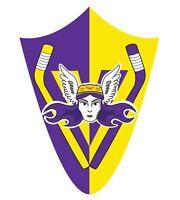 Valkyries Hockey Beginner Training Program