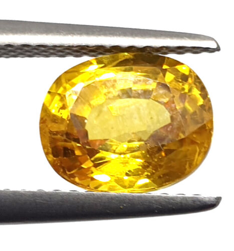 3.40 Ct Natural Certified Yellow Sapphire Super Premium Quality Loose Gemstone