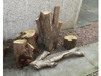 Fire Logs For Free Uplift