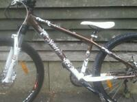 Fully serviced ladies scott Contessa really nice mtb at a bargain price
