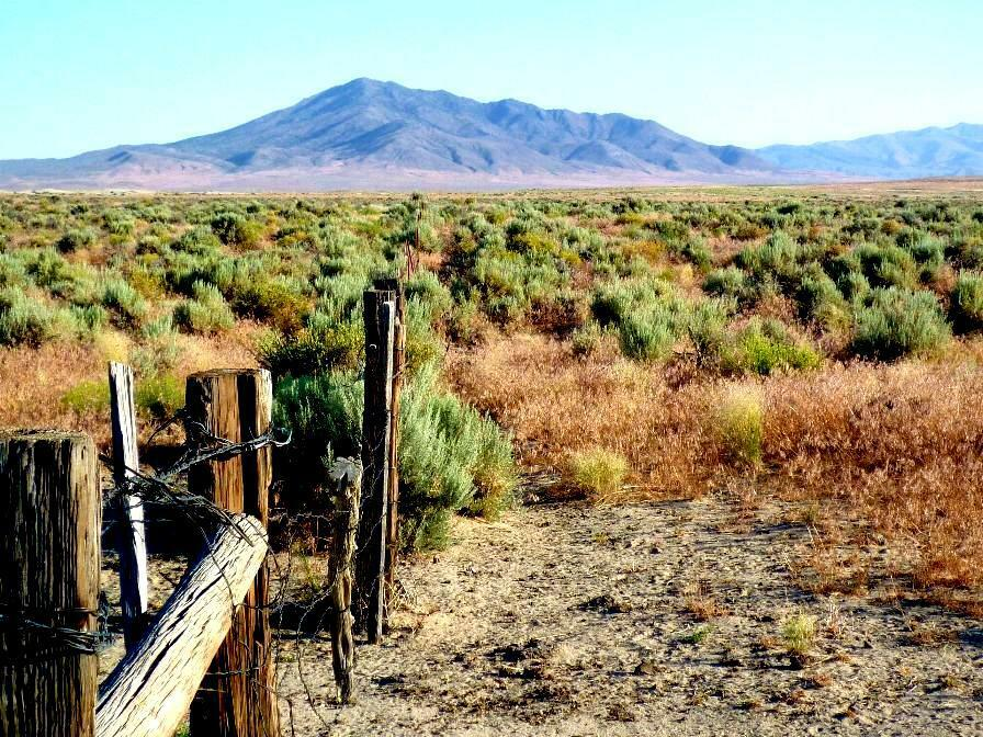 199 DOWN - 149/ MO. FOR 40 ACRE RANCH - STAKED SURVEYED - NO QUALIFY TERMS  - $510.00