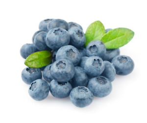 Fresh Blueberries $2.00 a pound.