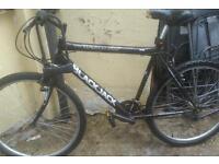 Blackjack mountain bike for sale