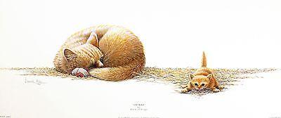 "WARWICK HIGGS ""Catnap"" kitten CUTE print, OUT-OF-art SIZE:25cm x 59cm  RARE"